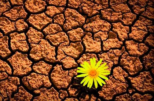 cómo aprender de los errores-blog un pedacito de psicología