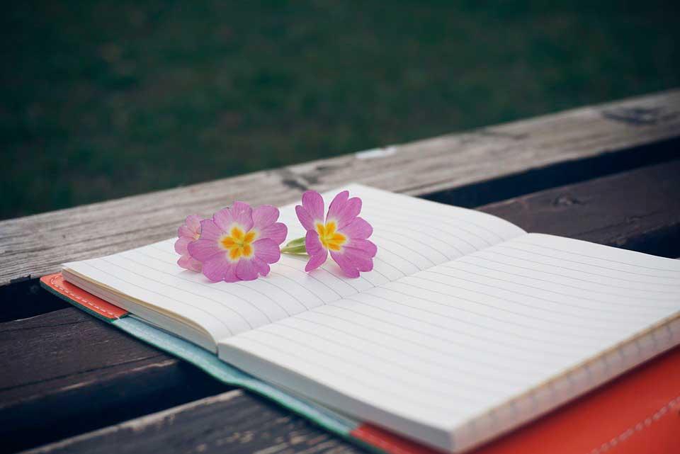 empoderamiento-blog un pedacito de psicología