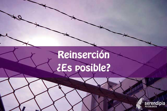 reinsercion-es-posible-blog