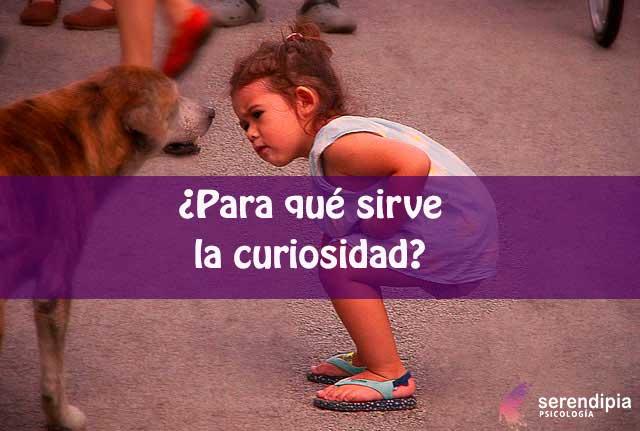 curiosidad-blog
