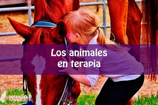 terapia-con-animales-blog