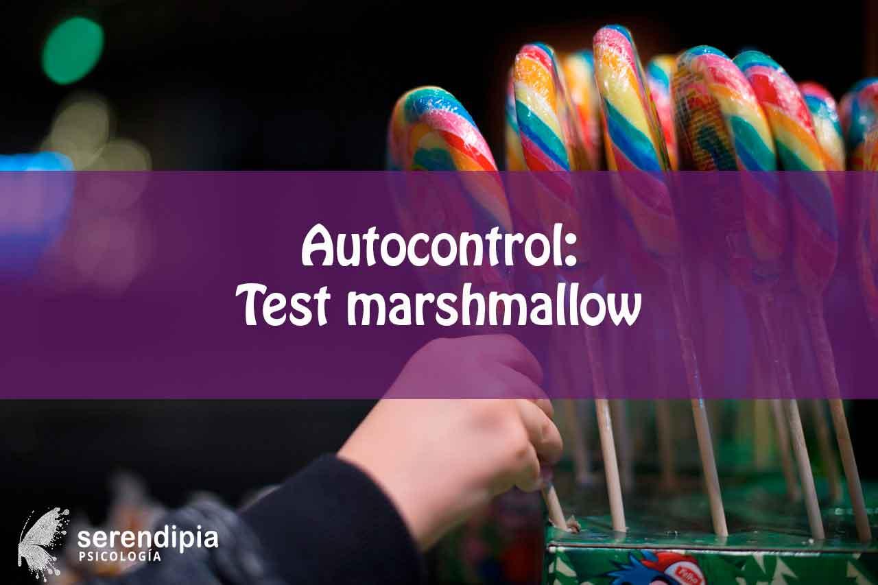 auto-control-test-marshmallow
