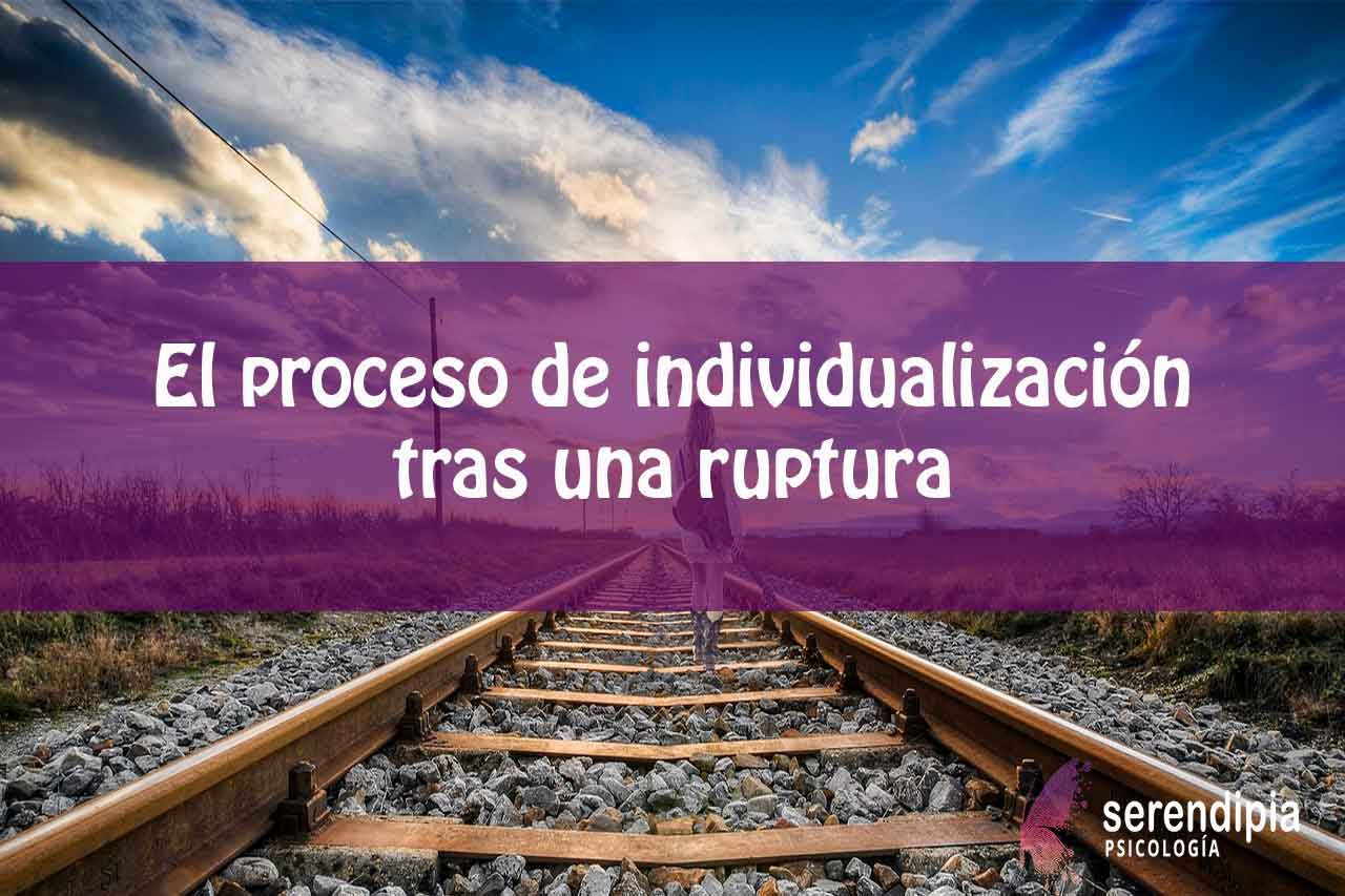 el-proceso-de-individualización